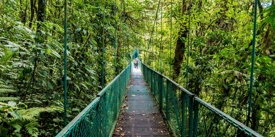Hanging Bridge in Selvatura Park, Puntarenas, Costa Rica (Photo: Simon Dannhauer/Shutterstock)