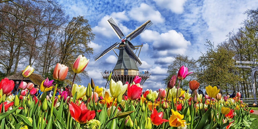 Keukenhof Botanical Garden, Holland, Netherlands (Photo: MarinaD_37/Shutterstock)