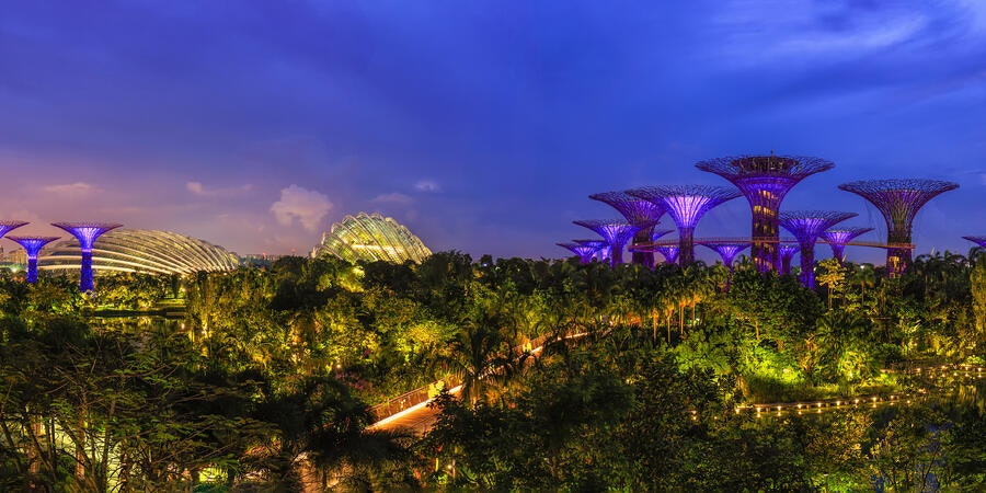 Supertree Groves, Gardens by the Bay, Singapore (Photo: SURAKIT SAWANGCHIT/Shutterstock)