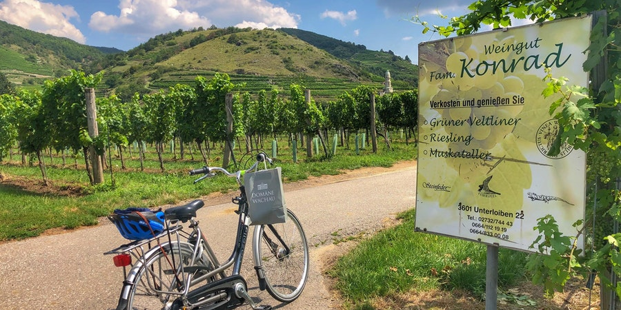 Cycling among the vineyards in Durnstein. (Photo by Carolyn Spencer Brown)