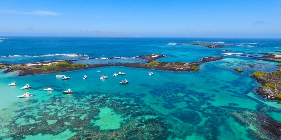 Best Cruise Ships in the Galapagos