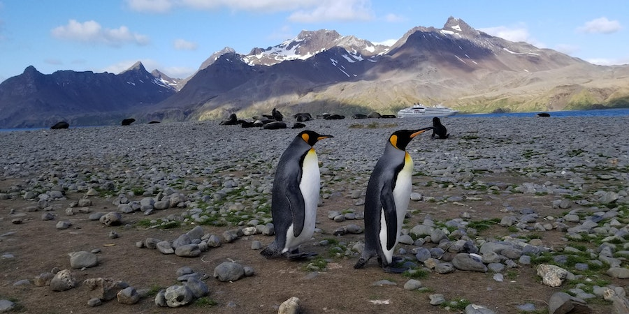 Abercrombie & Kent Expedition Cruises: What You Need to Know