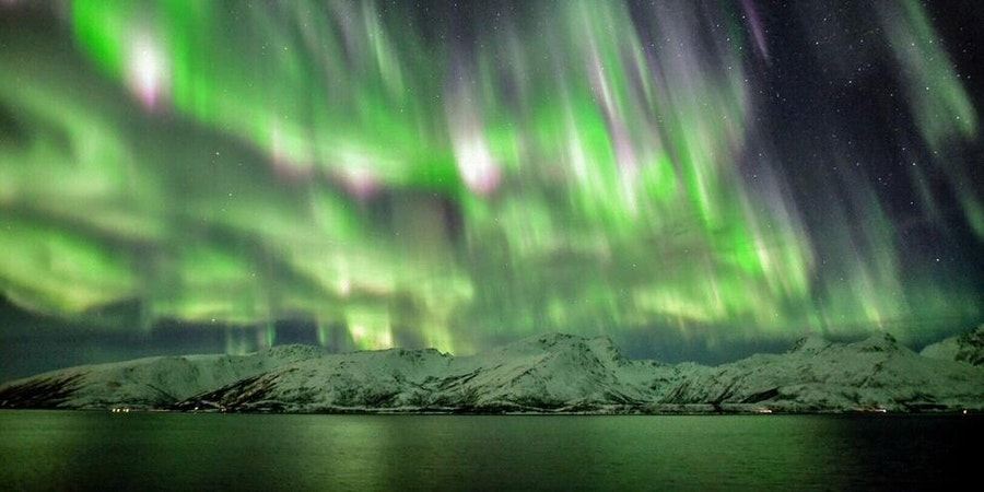The Northern Lights from Hurtigruten's Trollfjord (Photo: cabdtv/Cruise Critic member)