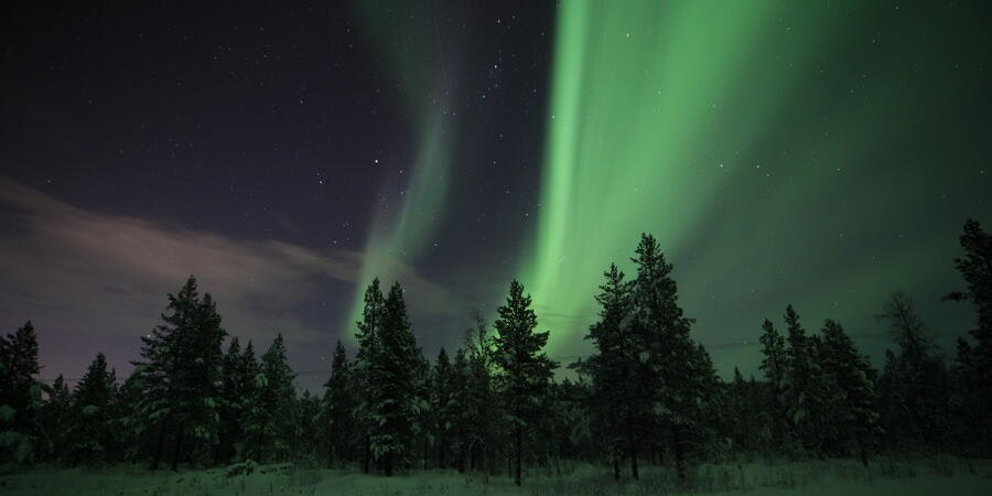 The Northern Lights in Alta, Norway (Photo: maritzarogerp/Cruise Critic member)
