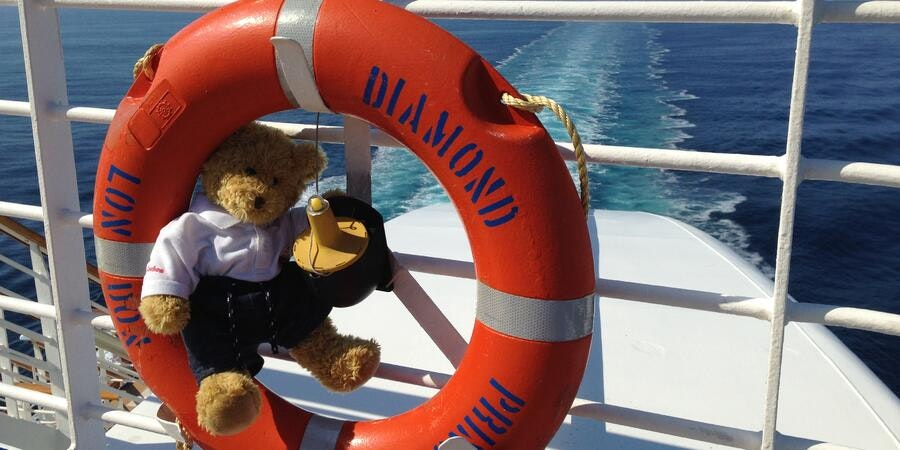 A vacationing teddy on Diamond Princess (Photo: DrT33th/Cruise Critic member)