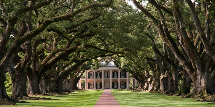 Oak Alley Plantation Tour (Photo:Zack Frank/Shutterstock)