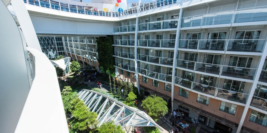 The Central Park View Cabin with Balcony on Oasis of the Seas
